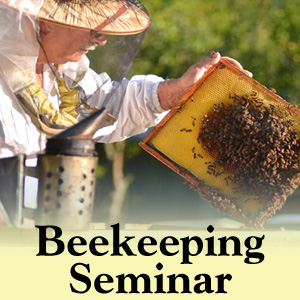 Beekeeping Seminar - 2019 - Local Event - Discover Central