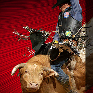 Professional Bull Rider Event - Special Offer