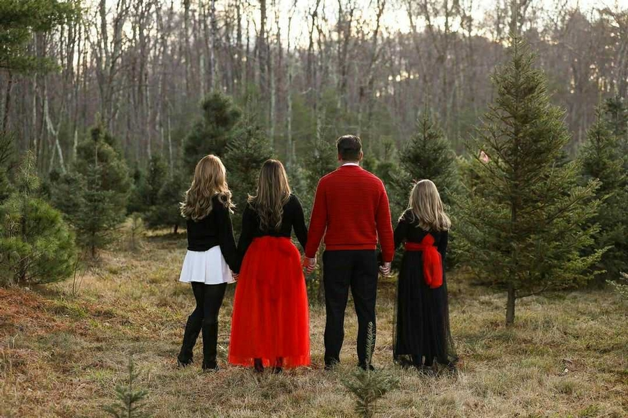The Best Christmas Tree Farms In Central Massachusetts