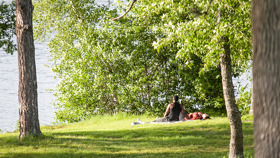 A Slice of Relaxation at Newton Hill Park
