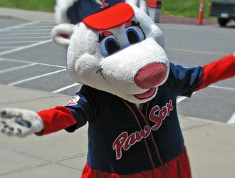 10 Things the 'Woo Sox' Would Love About Worcester