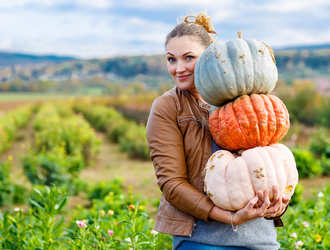 The Central Massachusetts Pumpkin Guide