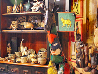 A Funky Zoo Inspired Shop Worth A Stop This Winter