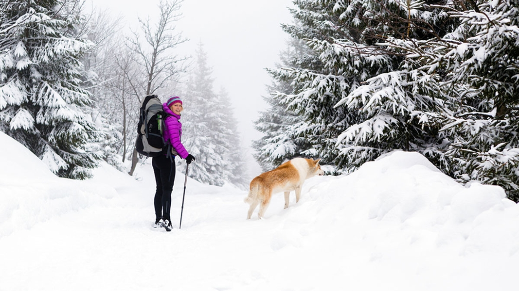 Bucket List: 6 Winter Adventures in Central Massachusetts