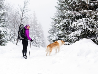 Bucket List: 7 Winter Adventures in Central Massachusetts